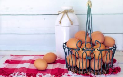 When does putting all of your eggs in one basket make investment sense?