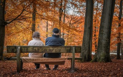 Should you defer taking your state pension?