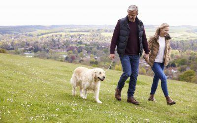 A smart way to save Inheritance Tax