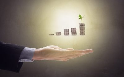 Seven investment styles to make your money grow